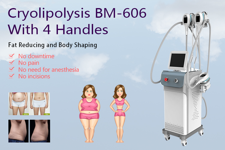 Cryolipolysis Body Slimming